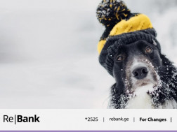 Re|Bank Continues to Support Homeless Animals